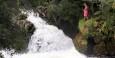 Trout Pond Falls